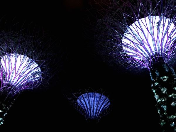 Illuminated Night Lighting Equipment Decoration Arts Culture And Entertainment Low Angle View Celebration Light Purple Light - Natural Phenomenon Backgrounds Nature Nightlife Outdoors Multi Colored EyeEmNewHere