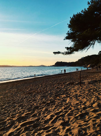 Plage du Monaco, 25th of December sunset Beach Le Pradet Sand Sea Seaside Mediterranean  France Golden Hour Sunset Land Sky Water Scenics - Nature Beauty In Nature Tranquility Tranquil Scene Nature Horizon Tree Incidental People Horizon Over Water Holiday Cloud - Sky Plant Outdoors Vapor Trail
