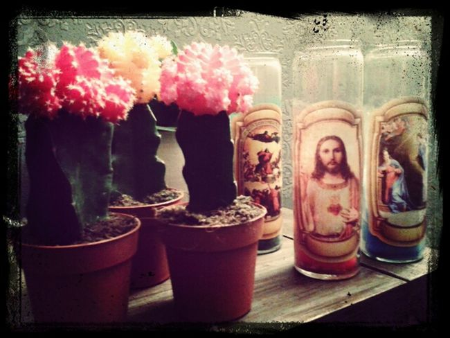 Mexican Grave Candles Mexican Cactus Colourful