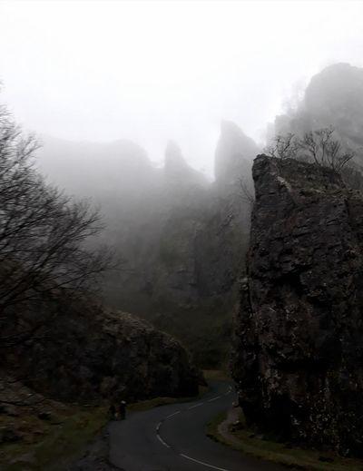 fog water