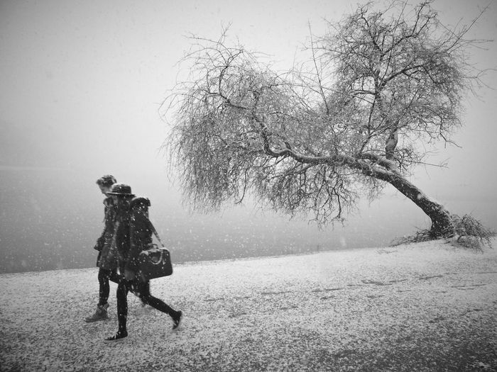 First Snow Outdoors Fog Monochrome Alster Hamburg Walking Snowing Blizzard Warm Clothing Cold Temperature People Snow Winter Tree