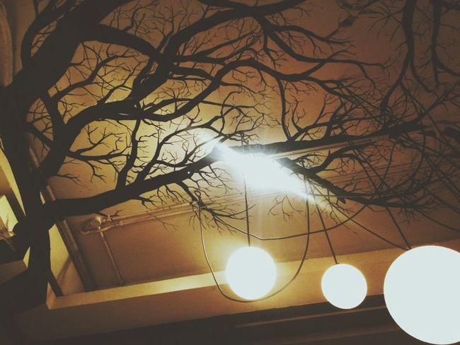 Lights Tree Art & Design