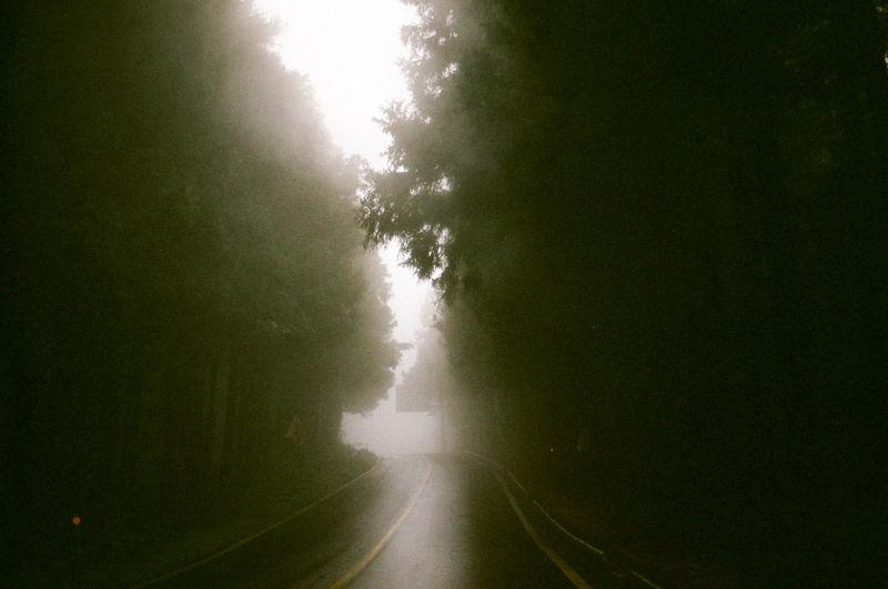 Foggy Jeju Jeju