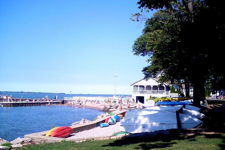 Tree Beach Sea Transportation Nautical Vessel Blue Water Clear Sky Boat Horizon Over Water Moored Great Lakes Lake Erie Tranquility Summer Tranquil Scene Day Scenics Outdoors Sky Vacations Sailboat Summertime Vacations Lakeshore