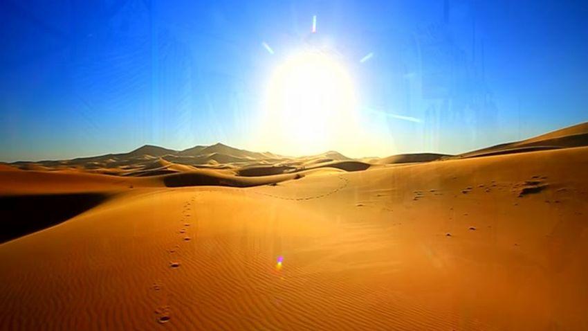 Atlas Casablanca Couscous Fes Holidays Meknès Morocco Traveling Amazigh Argane Beauty In Nature Camel Desert Beauty Environment Lore Marrakech Nature Oasis Palm Grove Sahara Scenics - Nature Sky Sun Sunlight Tagine
