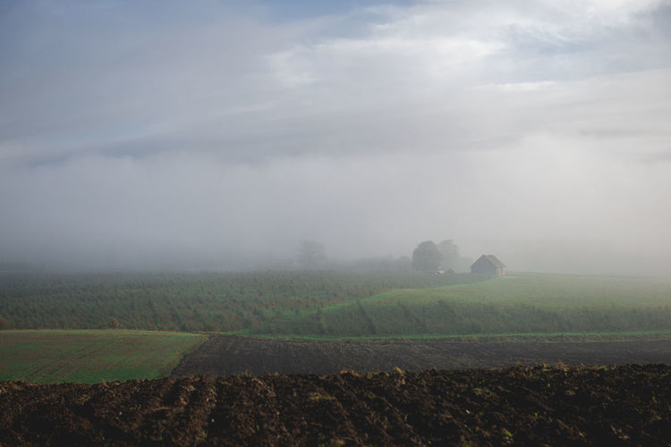 Autumn landscape with plowed countryside and houses in the fog