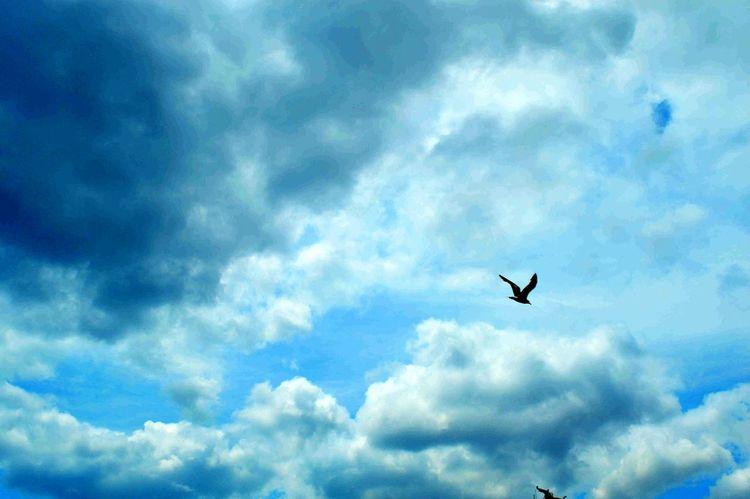 Gökyüzümavi Bulut Clouds Sky