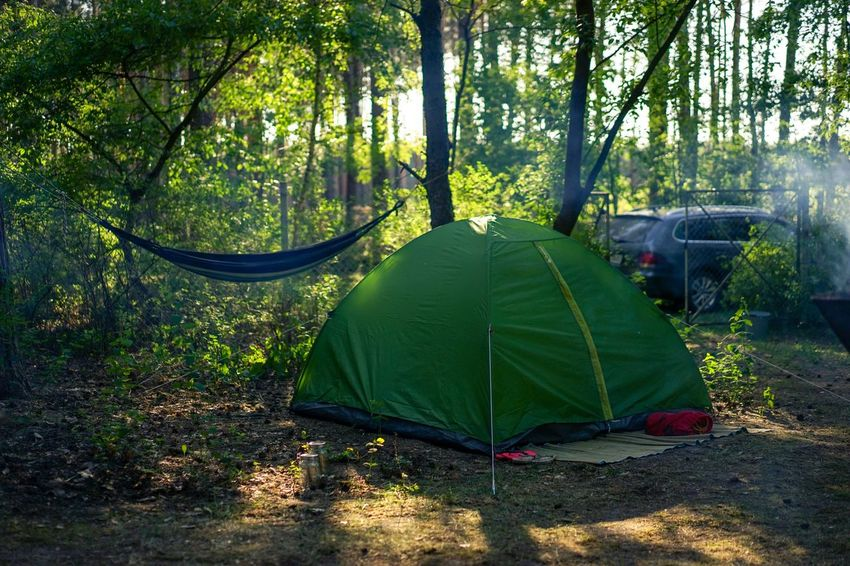 Camping with tent and hammock, late afternoon Afternoon Light Vacation Relaxing Spring Hammock Plant Tree Nature Green Color Growth Day Land Sunlight Forest Beauty In Nature Tranquility Tent No People Camping Outdoors Scenics - Nature Tranquil Scene