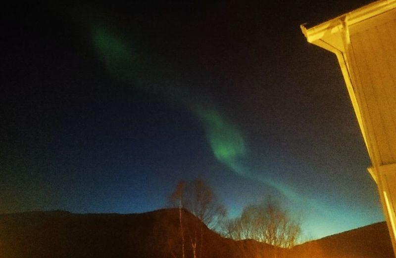 Northern Norway, Aurora Borealis Aurora Borealis Nofilter Winter Norway Harstad