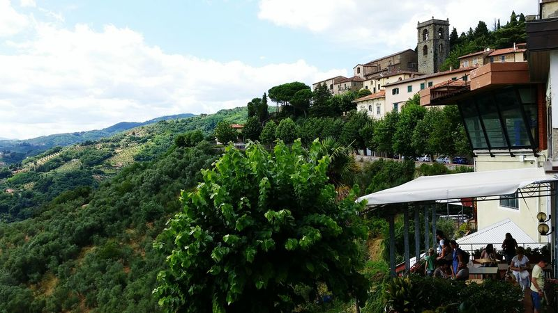 Montecatini Terme Greenery