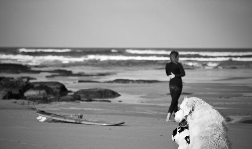 Surf Surfer Surfing Surfergirl  Surf Photography Surfboard Beach Blackandwhite Surfers Surfers Paradise