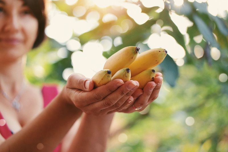 Tropical gift... Tasty Background Natural Light Health Green Giving Offer Summer Lifestyle Exotic Tropical Banana Human Hand Hand Human Body Part One Person Food Healthy Eating Food And Drink Fruit Nature Freshness Holding Women Growth Plant Adult Body Part Focus On Foreground Finger