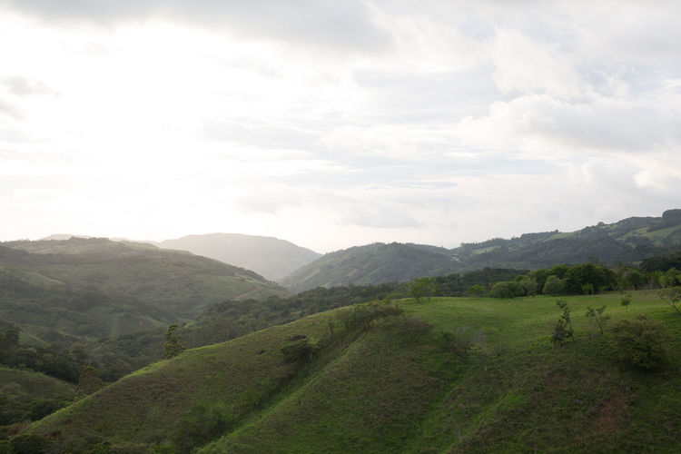 Grassy hill with wooded hills in background