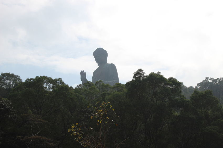 Silhouette Back Lit Tree Forest Nature Sky Outdoors No People Day Statue Sculpture HongKong Travel Photography Nature Landscape Tian Tan Buddha (Giant Buddha) 天壇大佛