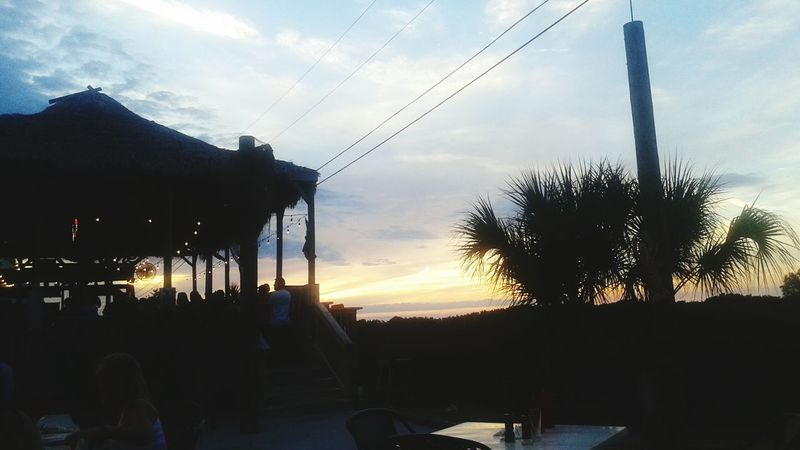 Taking Photos Florida Life Mothernature Where The Wild Things Are Florida Sun  Check This Out