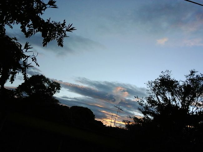 bello atardecer desde mi casa Tree Silhouette Cloud - Sky Sky Nature No People Outdoors