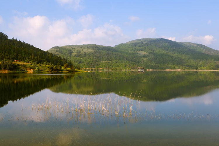 Lake Abant in the Bolu region of Turkey. Calm, Soothe, Pacify, Compose, Relax, Meditate Distant Hills, Mountains, Sky, Clouds, Sun, River, Limpid, Blue, Earth Lake Outdoors Reeds, Wild, Sunrise, Reflections, Trees Scenics Standing Water Tranquil Scene Tranquility Tree Voyage