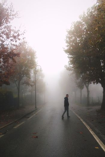 can you see through this fog? Sky And Clouds Fog Fall Beauty Fall Smoke Losemind Grunge Tumblrphoto Light And Shadow Mind  Thoughts One Person Tree Road Transportation Fog Full Length Plant Street Nature Men City Direction Walking Outdoors