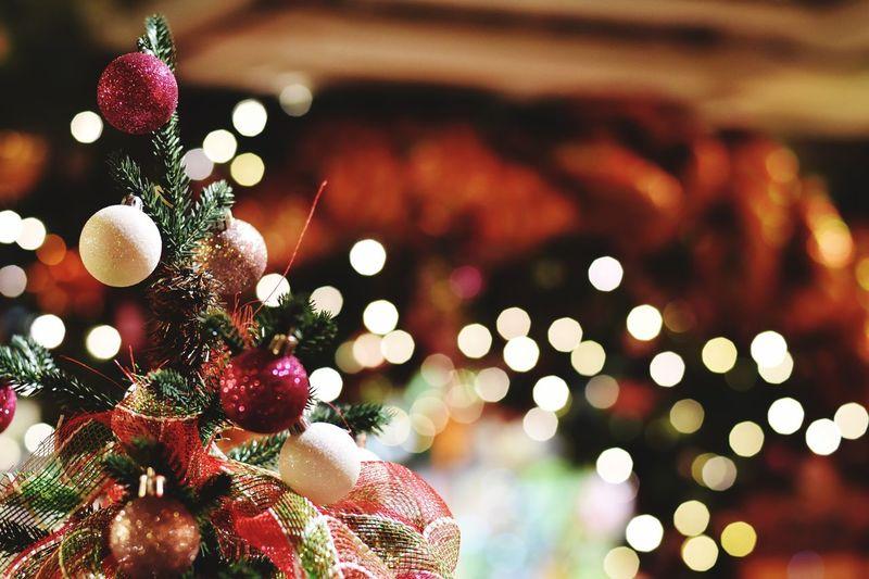 Close-Up Of Christmas Tree Against Illuminated Lights