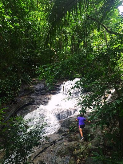 ChasingWaterfalls Forest Hiking Adventure Full Length Rock - Object One Person People Nature Outdoors Beauty In Nature Leisure Activity Scenics Tree Day Courage Water Kathuwaterfall Phuket Thailand