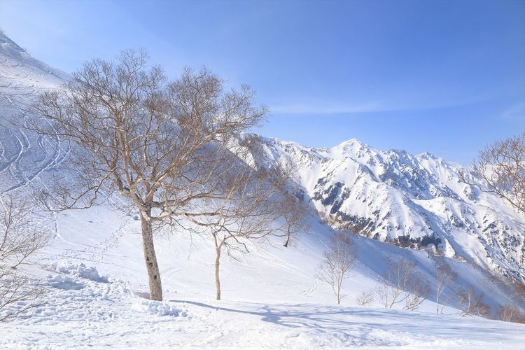 Spring has not come yet...行くとこ行ったらまだまだ冬景色(*'ω' *) Enjoying Life Check This Out Mountains Landscape Nature Winter Japan Nature Photography Outdoors Taking Photos Photography Snow Canon Eyem Nature Lovers  Blue Sky EyeEm Best Shots Outdoor Photography