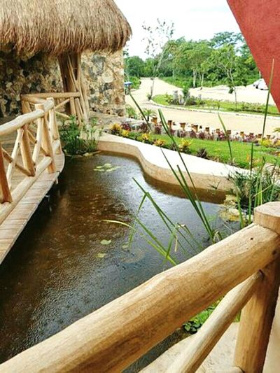 Cenotes Santa Barbara Water Rural Scene Yucatan Mexico EyEmNewHere