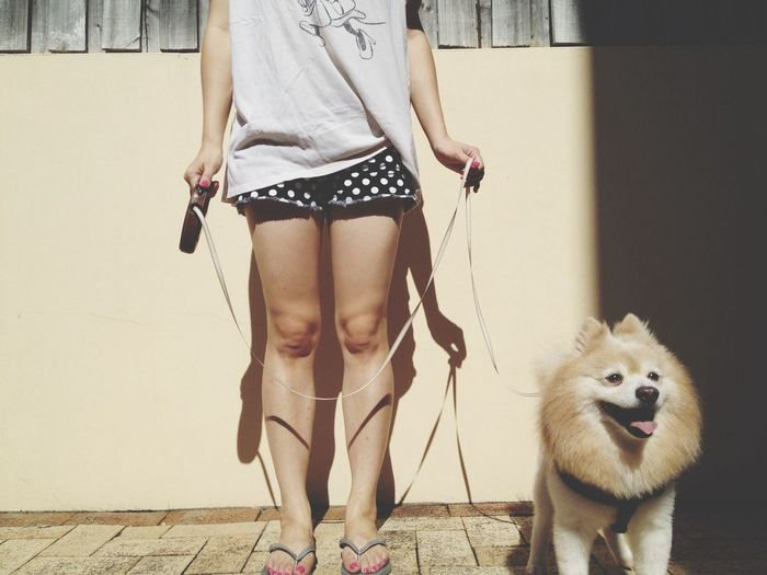 Low section of a woman with dog standing outdoors