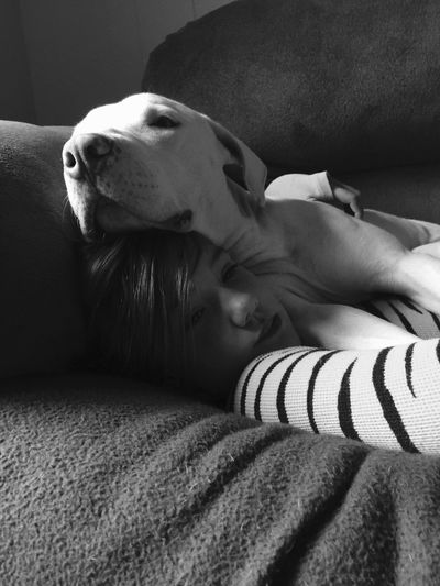 A Girl And Her Dog One Animal Domestic Animals Animal Themes Indoors  Pets Relaxation Dog Mammal Home Interior Side View Lying Down Resting Zoology Animal Head  Laziness Loyalty At Home Pitbull