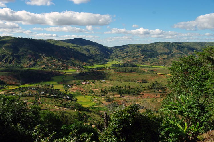 View from the former queen's holiday place Ambohimanga Antananarivo Beauty In Nature Green Color Growth Hills Holidays Island Landscape Madagascar  Malagasy Mountain Nature Outdoors Rice Field Scenics Sightseing Sky Tananarive Tourism Tranquility Tree Visit The Great Outdoors - 2018 EyeEm Awards