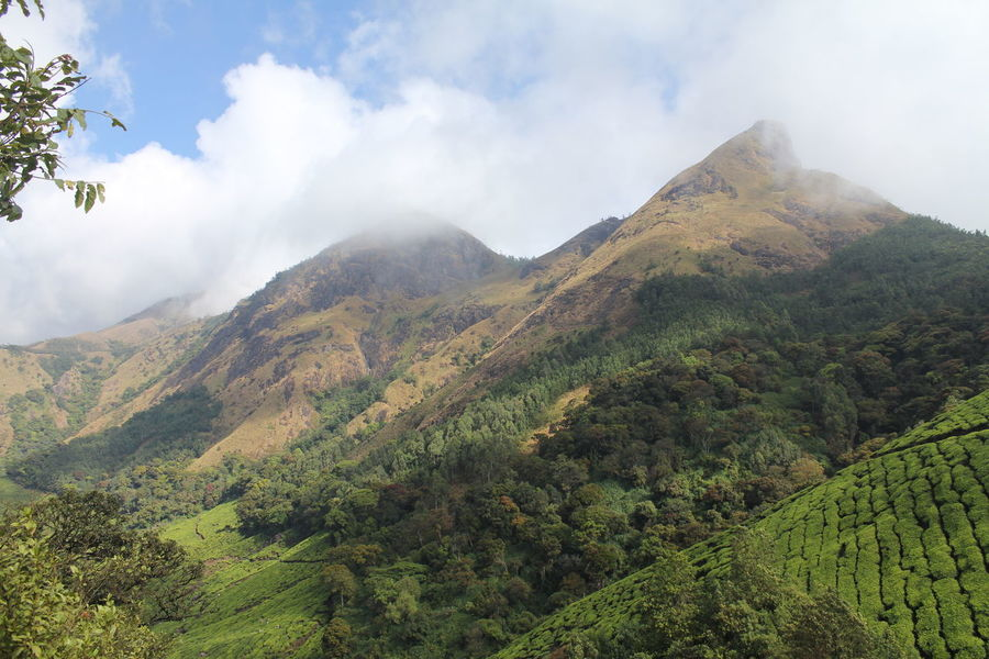 Hill Top Inda Kerala Munnar Nature Nature_collection Sky And Clouds Tea Estate View From The Top