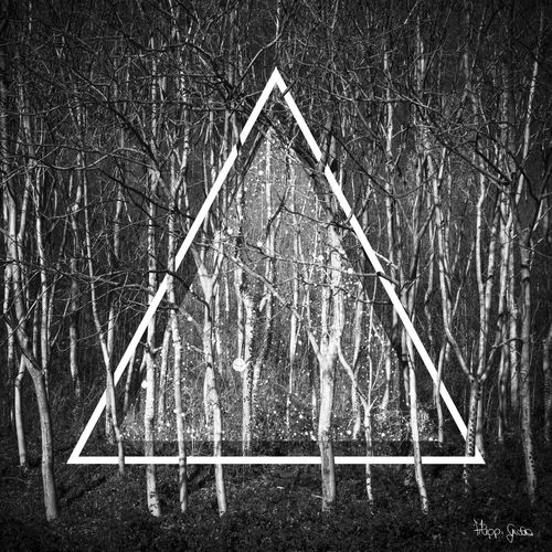 Think different. Imagine. Daydream. ©Giulia Filippi Art Autumn Bare Tree Blackandwhite Braids Branches Canon Conceptual Daydreaming Digital Art Drawing Forest Geometric Shape Illustration Light And Shadow Nature Outdoors Pattern Photographer Photography Repetition Tree Triangle Weather Wood