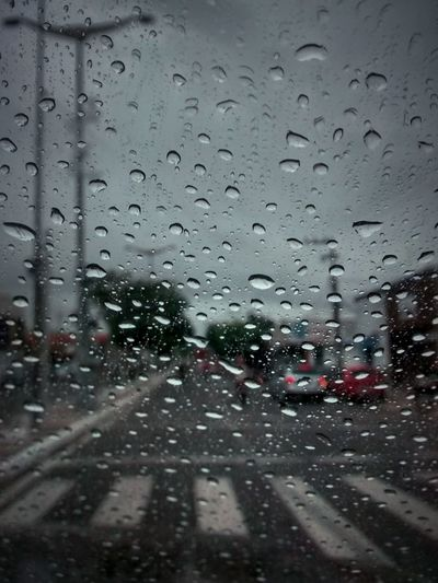 Rainy Days Rain Focus On Foreground Traffic Lights Traffic Stripes Road Hipnotic On My Way On The Road