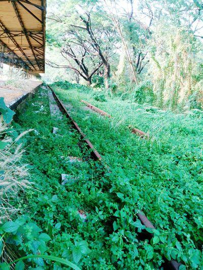 A VB Showcase April Old Railway Station Indian Railways Platform Rusted Tracks Unused Place Willington Island