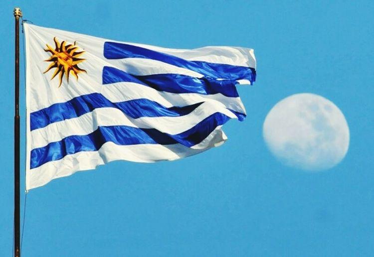 Es muy bella mi bandera, mi bandera; nada iguala su lucir, su lucir. Luis Suarez Edinsoncavani Martín Cáceres Pabellón Nacional Uruguay♥♥ Mi Bandera CHARRUA Treinta Y Tres Cerro Chato Blue Patriotism