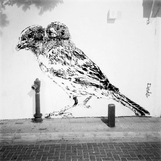 Street art dans les rues de Neve Tsedek à Tel Aviv. Taking Photos Street Art Great Performance Israel <3