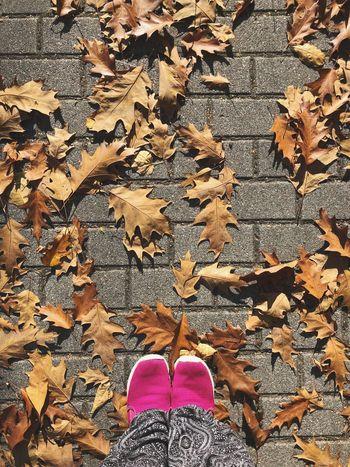 Autumn leaves Autumn Leaves Autumn Low Section One Person Shoe Human Leg Standing Real People Human Body Part Body Part Personal Perspective Autumn Mood