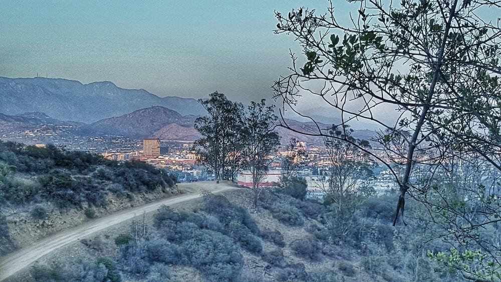 The Great Outdoors - 2016 EyeEm Awards California WestCoast Glendale Wildlife Mountains Freedom Nature Landscape_photography Landscape