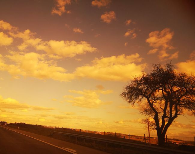 Road by silhouette trees against sky during sunset