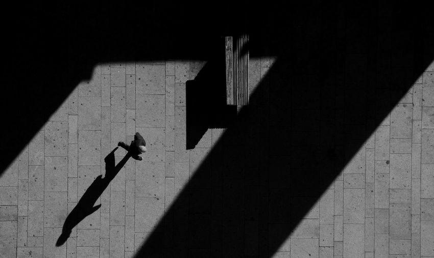 Directly above shot of man on walkway