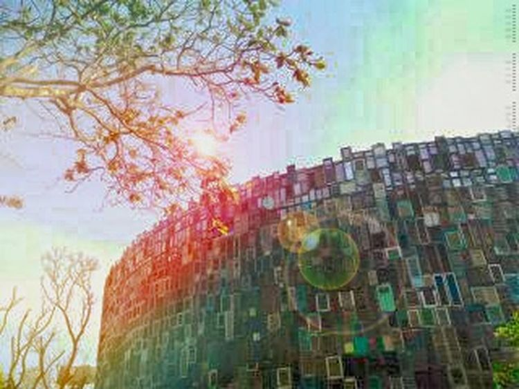 Tree Multi Colored Growth Sky Change Nature City Outdoors No People Day Cityscape Cyberspace Potatohead Bali Entrance Architectureporn EyeEmNewHere
