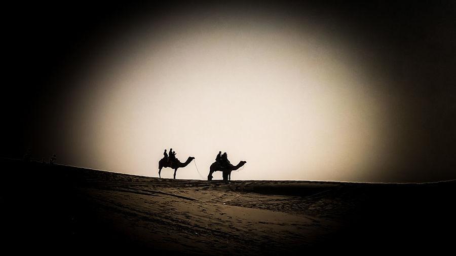 Silhouette people riding horse on desert against sky