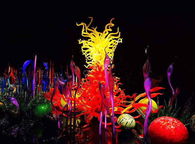 Night Illuminated No People Studio Shot Multi Colored Colourful Colour Of Life Coloursplash Black Background Indoors  Close-up Art Installation Glass Glass - Material Glass Art Glass Reflection Glass Objects  Glass_collection Chihuly Dale Chihuly Dale Chihuly Glass Art Dalechihuly Dale Chiuly Amazing Art