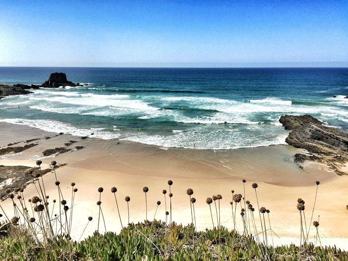 Being A Beach Bum Zambujeira Do Mar Praia Beach Life Is A Beach Bay Atlantic Ocean Costa Alentejana Costa Vicentina Portugal_lovers