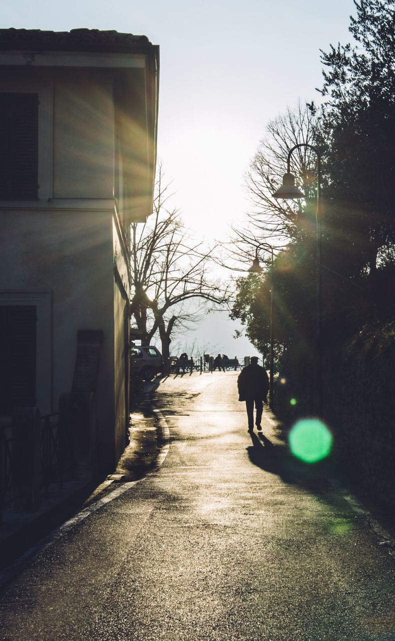 walking, rear view, real people, tree, the way forward, sunlight, full length, architecture, men, two people, outdoors, day, built structure, building exterior, bare tree, sky, people