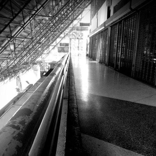 Líneas. Caracas Caricuao