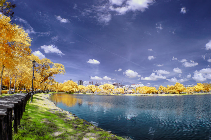 Infrared Photography. Atmospheric Mood Beauty In Nature Blue Cloud Foliage Horizon Over Land Infrared Lake Landscape Majestic Nature Scenics Sky Tasik Titiwangsa Tranquil Scene Tranquility Tree Walkways  Water Water_collection