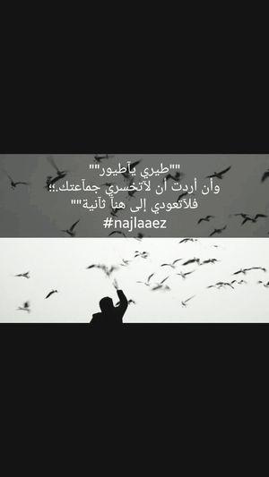 بقلمي تصميمي Najlaaez