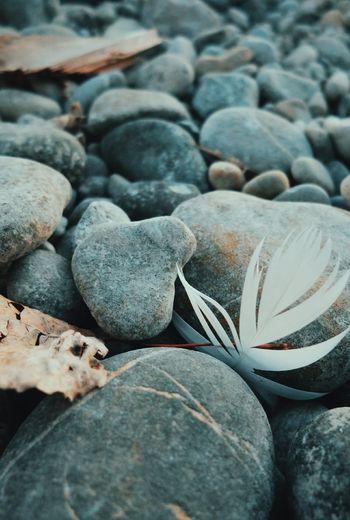 Close-up of stones