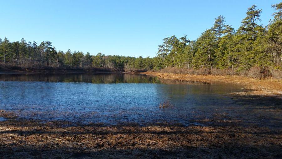 Torrey Pond