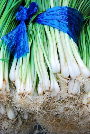 Leeks Vegetable Color Vegetal Close-up Vegetables Photo Vegetable Form Art Photography Creative Photography Roots Onion Onions